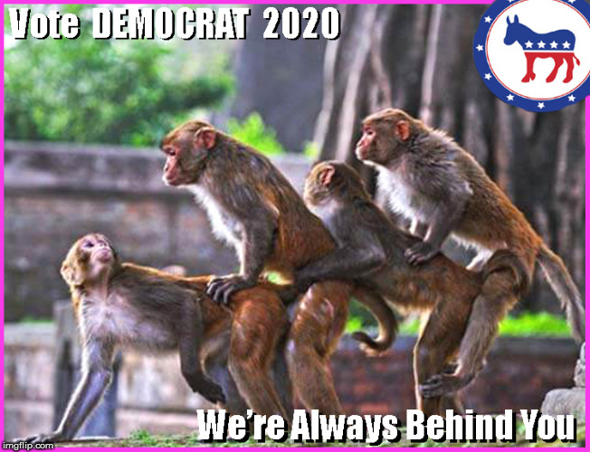 DEMOCRATS unveil new ELECTION POSTER 2020 | image tagged in democrats,lol so funny,funny memes,political meme,libtards,lgbtq | made w/ Imgflip meme maker
