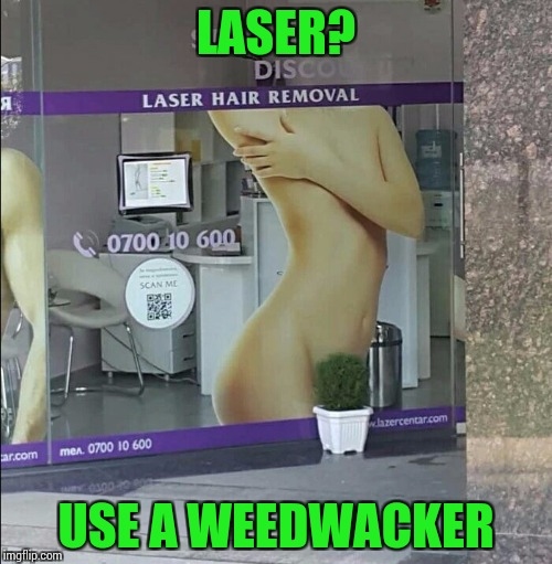 I don't like it bushy. NSFW? | LASER? USE A WEEDWACKER | image tagged in pipe_picasso,nsfw | made w/ Imgflip meme maker