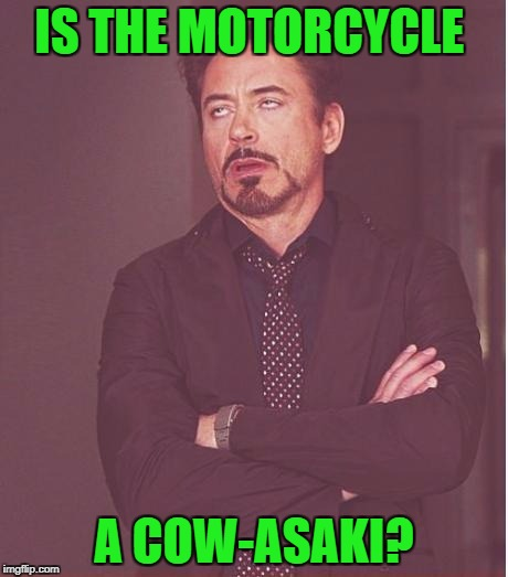 Face You Make Robert Downey Jr Meme | IS THE MOTORCYCLE A COW-ASAKI? | image tagged in memes,face you make robert downey jr | made w/ Imgflip meme maker
