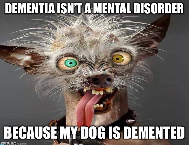 DEMENTIA ISN'T A MENTAL DISORDER BECAUSE MY DOG IS DEMENTED | made w/ Imgflip meme maker