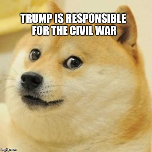 Doge Meme | TRUMP IS RESPONSIBLE FOR THE CIVIL WAR | image tagged in memes,doge | made w/ Imgflip meme maker