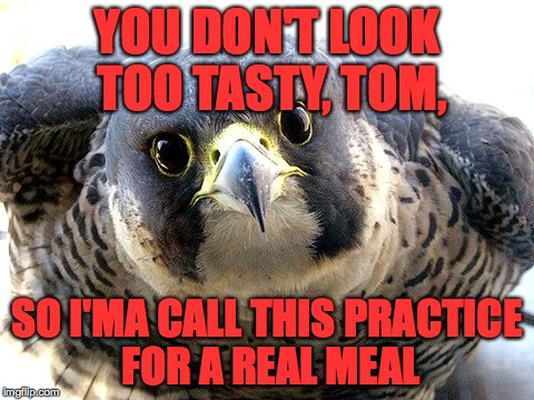 YOU DON'T LOOK TOO TASTY, TOM, SO I'MA CALL THIS PRACTICE FOR A REAL MEAL | made w/ Imgflip meme maker