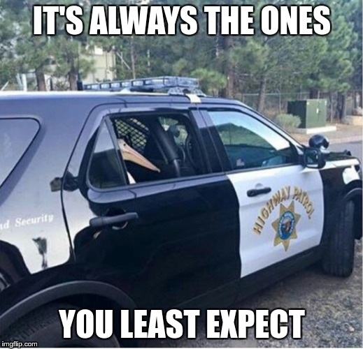 Jail Bird |  IT'S ALWAYS THE ONES; YOU LEAST EXPECT | image tagged in memes,funny,bird,expect,police,always | made w/ Imgflip meme maker