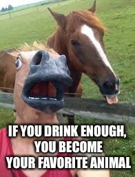 IF YOU DRINK ENOUGH, YOU BECOME YOUR FAVORITE ANIMAL | made w/ Imgflip meme maker
