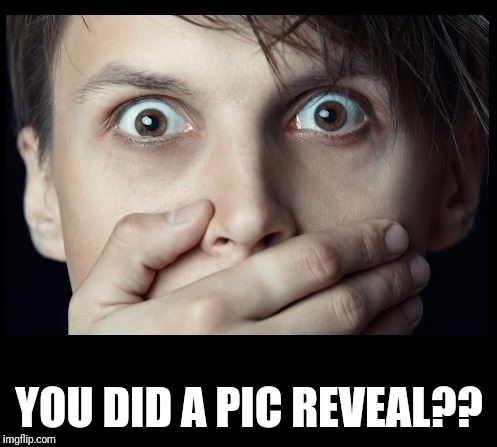 oh my | YOU DID A PIC REVEAL?? | image tagged in oh my | made w/ Imgflip meme maker