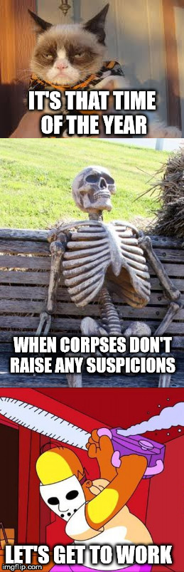 spoooctober | IT'S THAT TIME OF THE YEAR WHEN CORPSES DON'T RAISE ANY SUSPICIONS LET'S GET TO WORK | image tagged in grumpy cat halloween,halloween,waiting skeleton | made w/ Imgflip meme maker