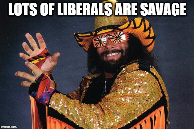 Savage | LOTS OF LIBERALS ARE SAVAGE | image tagged in savage | made w/ Imgflip meme maker