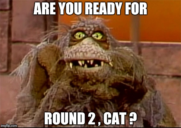 Scred | ARE YOU READY FOR ROUND 2 , CAT ? | image tagged in scred | made w/ Imgflip meme maker