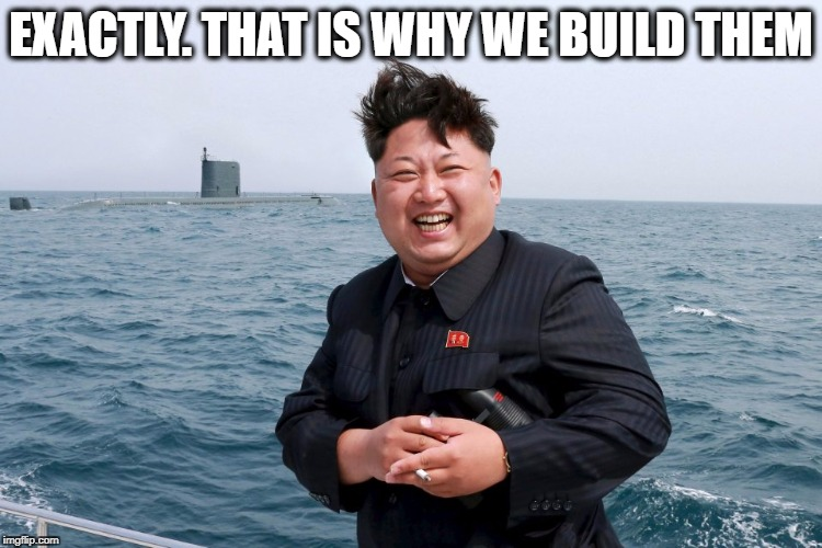 Kim with Sub | EXACTLY. THAT IS WHY WE BUILD THEM | image tagged in kim with sub | made w/ Imgflip meme maker