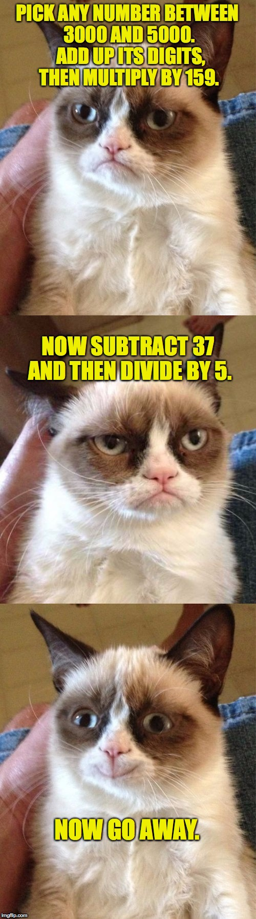 Grumpy Cat's Sunday Math Challenge! | PICK ANY NUMBER BETWEEN 3000 AND 5000.  ADD UP ITS DIGITS, THEN MULTIPLY BY 159. NOW GO AWAY. NOW SUBTRACT 37 AND THEN DIVIDE BY 5. | image tagged in bad pun grumpy cat,memes,math,grumpy cat | made w/ Imgflip meme maker