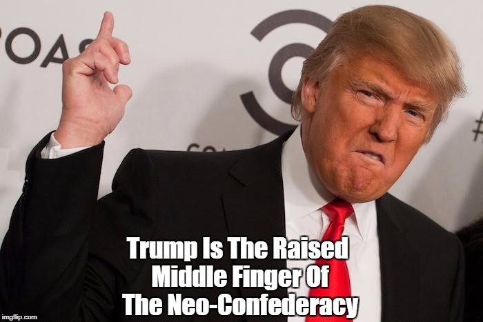 """Trump Is The Raised Middle Finger Of The Neo-Confederacy"" 