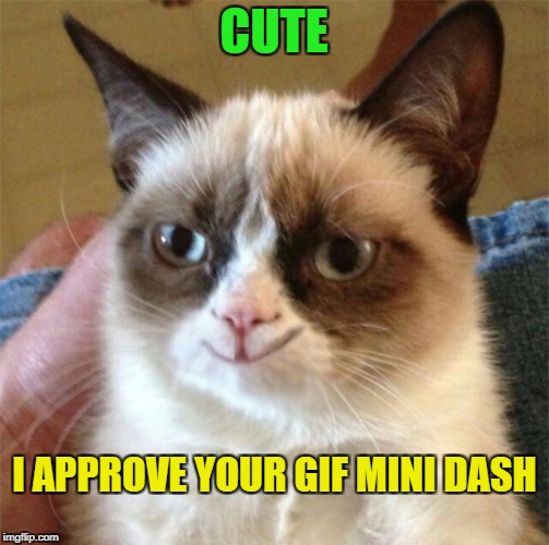 CUTE I APPROVE YOUR GIF MINI DASH | made w/ Imgflip meme maker
