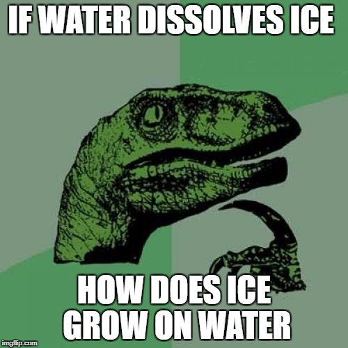 Philosoraptor Meme | IF WATER DISSOLVES ICE HOW DOES ICE GROW ON WATER | image tagged in memes,philosoraptor | made w/ Imgflip meme maker