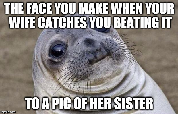 Awkward Moment Sealion Meme | THE FACE YOU MAKE WHEN YOUR WIFE CATCHES YOU BEATING IT TO A PIC OF HER SISTER | image tagged in memes,awkward moment sealion | made w/ Imgflip meme maker