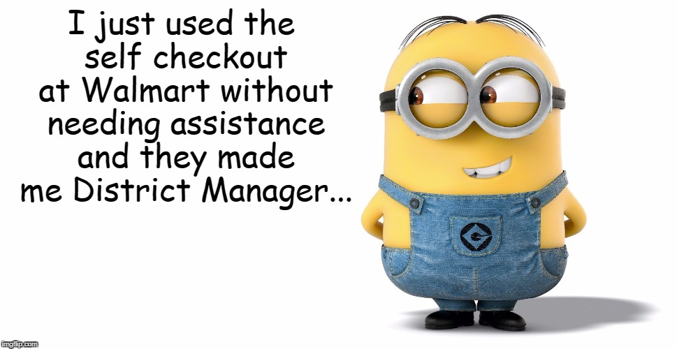 Self Checkout... | I just used the self checkout at Walmart without needing assistance and they made me District Manager... | image tagged in self checkout,walmart | made w/ Imgflip meme maker