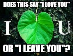 "Pipe_Picasso told me to post this | DOES THIS SAY ""I LOVE YOU"" OR ""I LEAVE YOU""? 