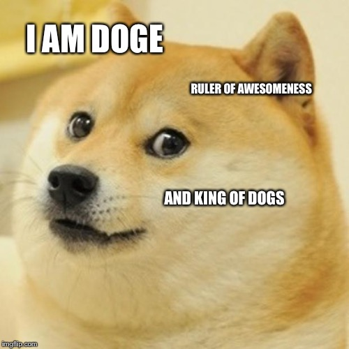Doge Meme | I AM DOGE RULER OF AWESOMENESS AND KING OF DOGS | image tagged in memes,doge | made w/ Imgflip meme maker