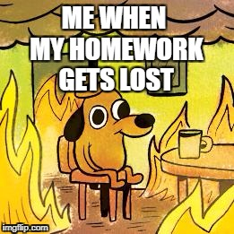 Face it.. it's reality XD | ME WHEN MY HOMEWORK GETS LOST | image tagged in dog in burning house,homework,school,fire,sad but true | made w/ Imgflip meme maker