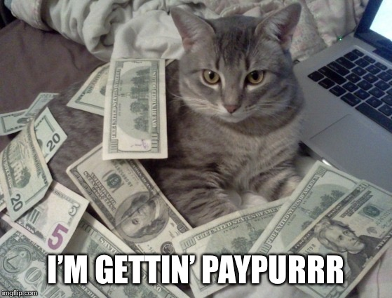 cat money | I'M GETTIN' PAYPURRR | image tagged in cat money | made w/ Imgflip meme maker