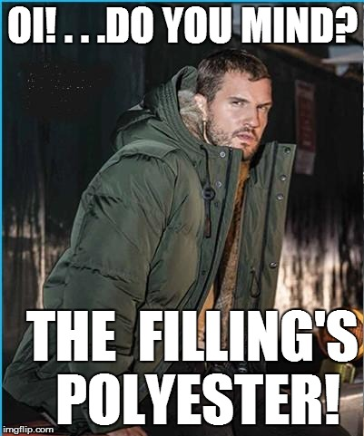 OI! . . .DO YOU MIND? THE  FILLING'S POLYESTER! | made w/ Imgflip meme maker