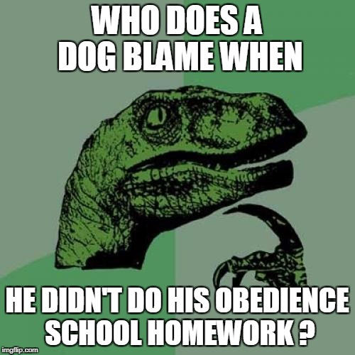 Philosoraptor Meme | WHO DOES A DOG BLAME WHEN HE DIDN'T DO HIS OBEDIENCE SCHOOL HOMEWORK ? | image tagged in memes,philosoraptor | made w/ Imgflip meme maker
