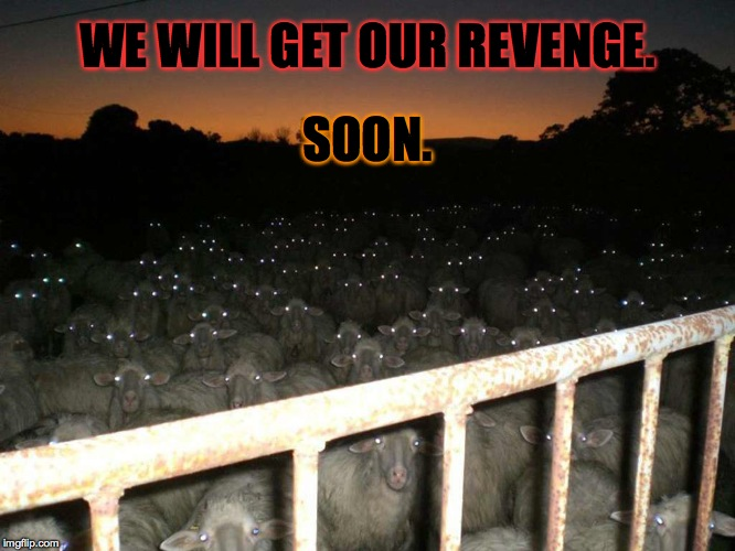 WE WILL GET OUR REVENGE. SOON. | made w/ Imgflip meme maker
