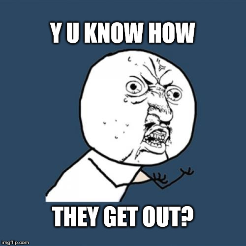 Y U No Meme | Y U KNOW HOW THEY GET OUT? | image tagged in memes,y u no | made w/ Imgflip meme maker