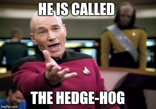 Picard Wtf Meme | HE IS CALLED THE HEDGE-HOG | image tagged in memes,picard wtf | made w/ Imgflip meme maker