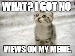 Sad Cat | WHAT? I GOT NO VIEWS ON MY MEME. | image tagged in memes,sad cat | made w/ Imgflip meme maker
