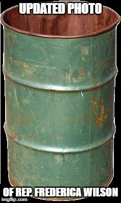 UPDATED PHOTO OF REP. FREDERICA WILSON | image tagged in empty barrel | made w/ Imgflip meme maker
