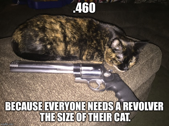 .460 BECAUSE EVERYONE NEEDS A REVOLVER THE SIZE OF THEIR CAT. | image tagged in 460,smith and wesson,revolver | made w/ Imgflip meme maker