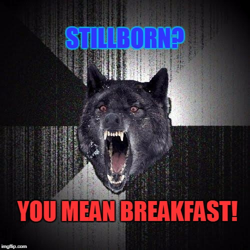 Insanity Wolf Meme | STILLBORN? YOU MEAN BREAKFAST! | image tagged in memes,insanity wolf | made w/ Imgflip meme maker