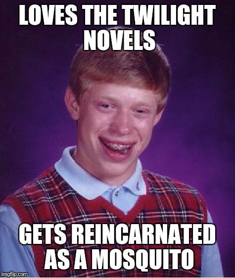 Bad Luck Brian Meme | LOVES THE TWILIGHT NOVELS GETS REINCARNATED AS A MOSQUITO | image tagged in memes,bad luck brian | made w/ Imgflip meme maker