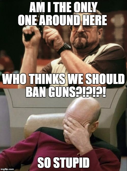 AM I THE ONLY ONE AROUND HERE SO STUPID WHO THINKS WE SHOULD  BAN GUNS?!?!?! | image tagged in captain picard facepalm,am i the only one around here | made w/ Imgflip meme maker