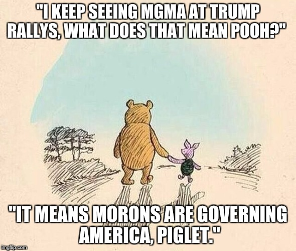"Pooh and Piglet | ""I KEEP SEEING MGMA AT TRUMP RALLYS, WHAT DOES THAT MEAN POOH?"" ""IT MEANS MORONS ARE GOVERNING AMERICA, PIGLET."" 