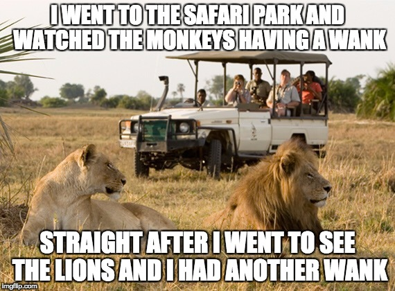 see the monkeys | I WENT TO THE SAFARI PARK AND WATCHED THE MONKEYS HAVING A WANK STRAIGHT AFTER I WENT TO SEE THE LIONS AND I HAD ANOTHER WANK | image tagged in safari jeep,monkey,wanker | made w/ Imgflip meme maker