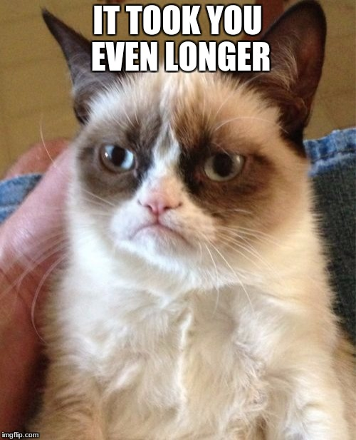 Grumpy Cat Meme | IT TOOK YOU EVEN LONGER | image tagged in memes,grumpy cat | made w/ Imgflip meme maker