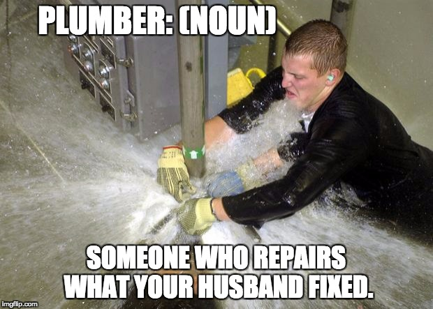 Plumber | PLUMBER: (NOUN) SOMEONE WHO REPAIRS WHAT YOUR HUSBAND FIXED. | image tagged in plumber | made w/ Imgflip meme maker