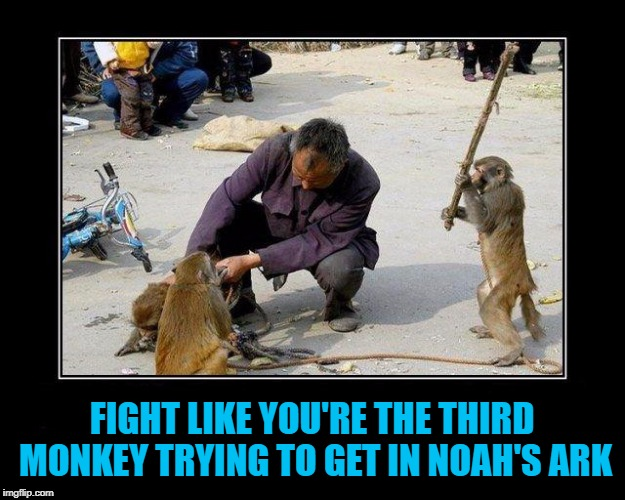 No rules in the Game of Life!!! | FIGHT LIKE YOU'RE THE THIRD MONKEY TRYING TO GET IN NOAH'S ARK | image tagged in monkey sneak attack,memes,monkeys,funny,animals,no rules | made w/ Imgflip meme maker