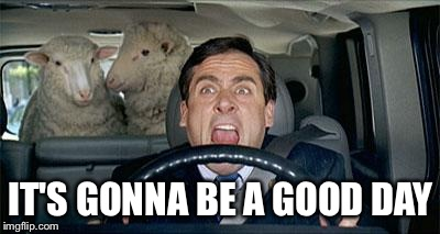 Steve Carrell Sheep | IT'S GONNA BE A GOOD DAY | image tagged in steve carrell sheep | made w/ Imgflip meme maker