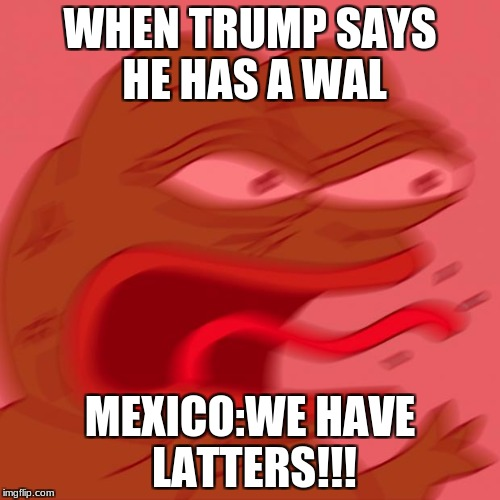 pepe | WHEN TRUMP SAYS HE HAS A WAL MEXICO:WE HAVE LATTERS!!! | image tagged in pepe | made w/ Imgflip meme maker