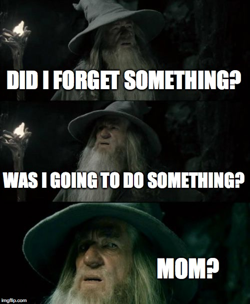 Confused Gandalf Meme | DID I FORGET SOMETHING? WAS I GOING TO DO SOMETHING? MOM? | image tagged in memes,confused gandalf | made w/ Imgflip meme maker