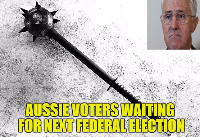 AUSSIE VOTERS WAITING FOR NEXT FEDERAL ELECTION | image tagged in mace turnbull | made w/ Imgflip meme maker