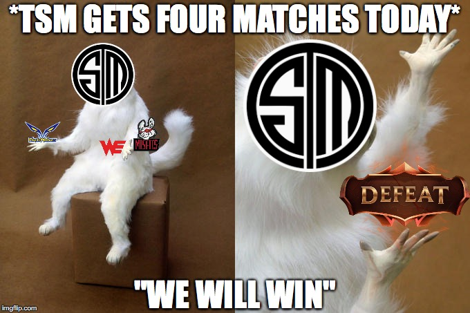 "Persian Cat Room Guardian Meme | *TSM GETS FOUR MATCHES TODAY* ""WE WILL WIN"" 