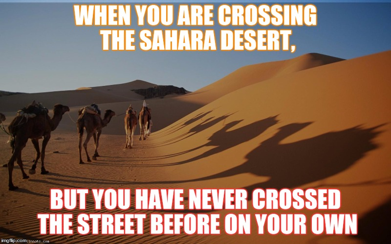 A DESERT MEME | WHEN YOU ARE CROSSING THE SAHARA DESERT, BUT YOU HAVE NEVER CROSSED THE STREET BEFORE ON YOUR OWN | image tagged in am i the only one around here | made w/ Imgflip meme maker