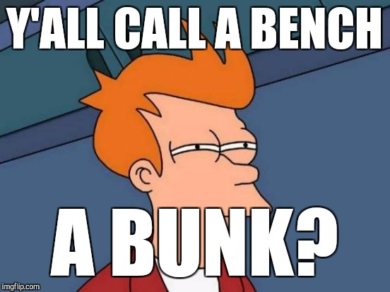 Futurama Fry Meme | Y'ALL CALL A BENCH A BUNK? | image tagged in memes,futurama fry | made w/ Imgflip meme maker