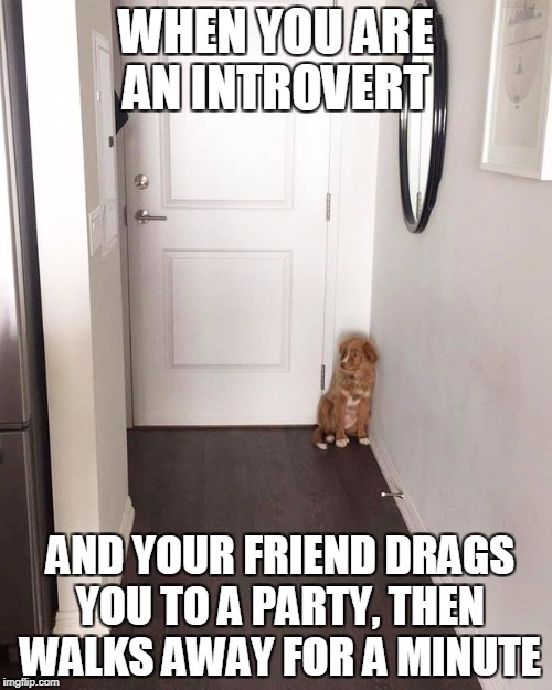 """Come on, it'll be fun"" 