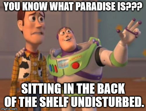 X, X Everywhere Meme | YOU KNOW WHAT PARADISE IS??? SITTING IN THE BACK OF THE SHELF UNDISTURBED. | image tagged in memes,x,x everywhere,x x everywhere | made w/ Imgflip meme maker