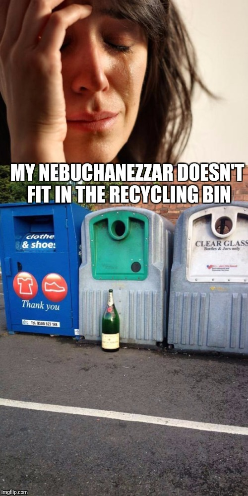 First World Problems.  When the champagne is gone and the party is over. | MY NEBUCHANEZZAR DOESN'T FIT IN THE RECYCLING BIN | image tagged in nebuchanezzar,champagne,first world problems,monday mornings | made w/ Imgflip meme maker