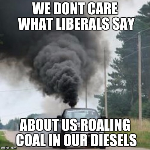 WE DONT CARE WHAT LIBERALS SAY ABOUT US ROALING COAL IN OUR DIESELS | image tagged in memes | made w/ Imgflip meme maker
